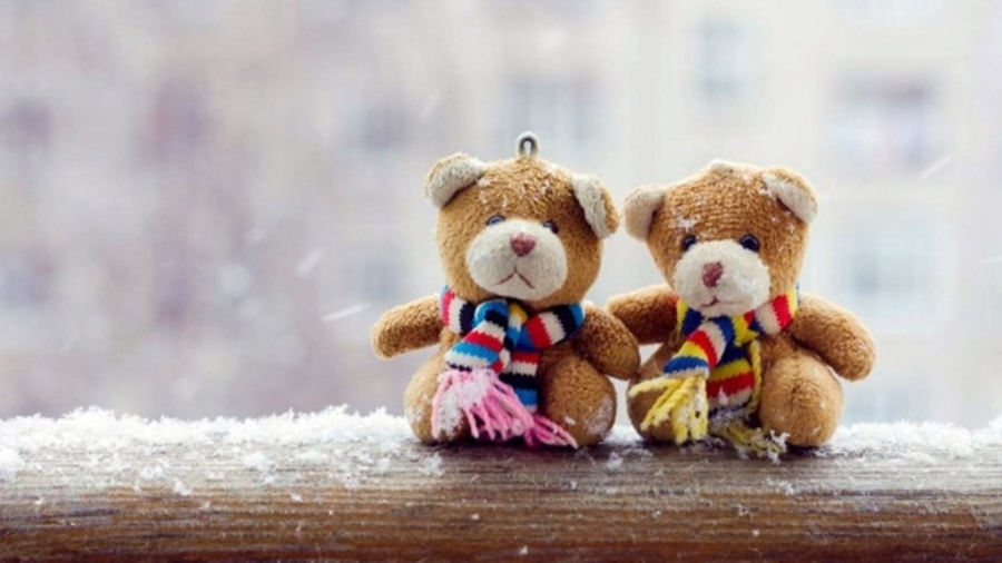 romantic-teddy-day-facebook-photos